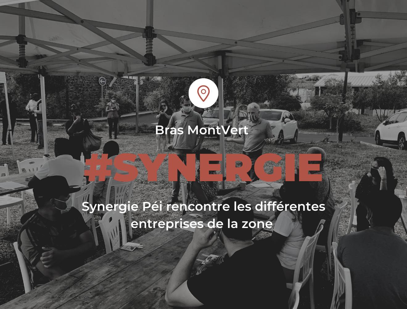 synergie-pei-TCO-zone-activité-économique-échange-entreprise